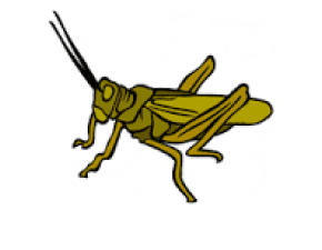 CricketBot