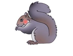 SquirrelBot