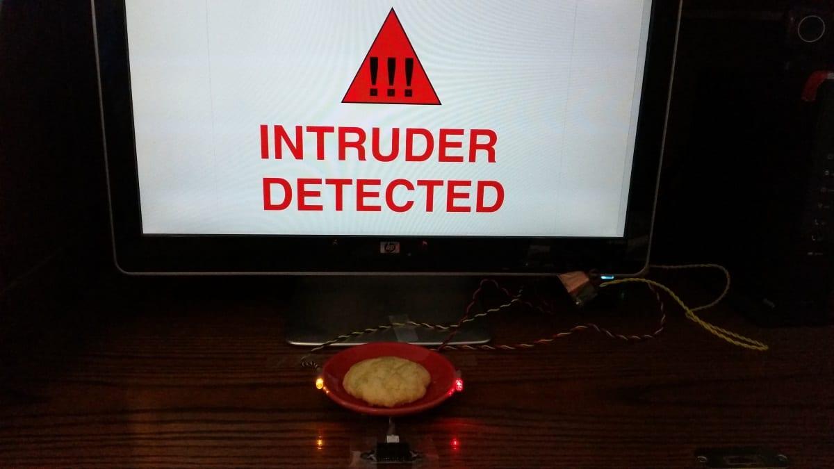 Snap! Burglar Alarm